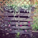 Pallet garden | Pallet Ideas | Pinterest