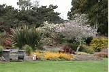 visit the mendocino coast botanical gardens landscaping network