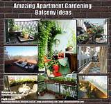 Amazing Apartment Gardening Balcony Ideas | Happy House and Garden