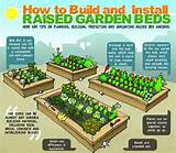 Raised garden beds | Agricultura urbana | Pinterest