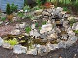 rock garden designs ideas