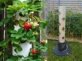 Strawberry Vertical Garden Made From PVC Tubes - Find Fun Art Projects ...