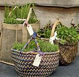 Small Space herb Container and Herb Garden Ideas