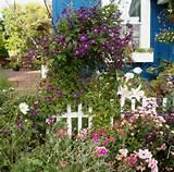 garden designs for sunny areas continue reading garden designs for ...