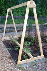 diy tomato trellis google search gardening pinterest