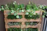 Palate garden | Small Space Container Patio Garden Ideas | Pinterest