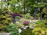 Jardim com pedras decorativas - Fotos e fotos|Seu portal de imagens ...