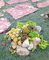 succulent and flagstone walkway out in the yard pinterest