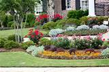 landscaping designs with knockout roses flower garden designs for