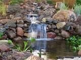 pond-pictures/Waterfalls/backyard-koi-pond