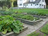 unique raised garden bed ideas raised garden bed ideas