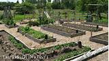Raised beds with mulch walkways