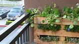garden designs; balcony garden ideas; balcony garden designs; balcony ...