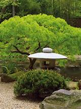 Simple Style: The Subtle Appeal of Japanese Gardens | Landscaping ...