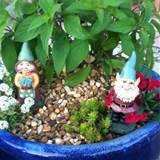 gnome garden gardening outdoor ideas pinterest