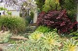 welcoming path goodman landscape design