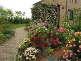 related pix small rose gardens small rose garden plans please enable ...