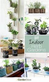 diy indoor herb gardens great ideas tutorials herbgarden