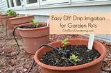 Easy DIY Drip Irrigation System For Garden Pots
