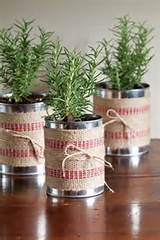 Here is an easy idea… pot up small transplants of aromatic herbs in ...