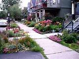 download flower garden ideas for small front yard in front of house
