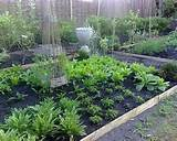 Small Vegetable Garden Ideas Designs | garden | Pinterest
