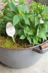 Herb garden! | Gardening Ideas | Pinterest