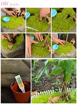 DIY Fairy Garden....Like the use of the tropical plant for the 'tree ...