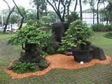 Pinoy Exclusive Garden Design | Modern Home Interior Design Ideas