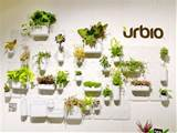 transform bare walls to bright indoor gardens with the versatile urbio