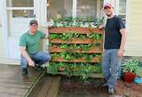 Innovative DIY Pallet Vertical Garden Ideas | EASY DIY and CRAFTS