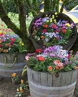 Barrel flower planters | Garden Ideas | Pinterest