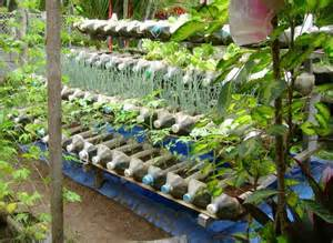 plastic container gardening ideas ideas home inspirations