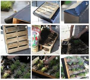 Recycled wooden pallet vertical garden | safintraroofing