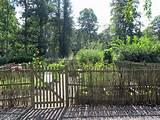 Summit Musings: Friday Fences - A Swedish Garden