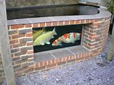 pond ideas window decorating ideas koi ponds aquarium garden pond