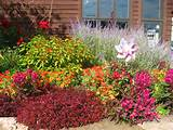 Butterfly Garden Design Ideas: 20 Astounding Butterfly Garden Ideas ...