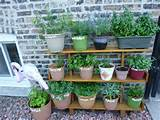 Small Herb Garden Ideas | Garden Design