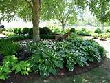 ... For Greater Variety in Your Garden - Landscaping - Gardening Ideas