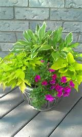 Flower Gardens Patios, Gardens Ideas, Container Gardens, 388648 Pixel ...