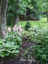 woodland garden path ideas for pinterest