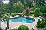 re landscape around the pool with ornamentals perennials and