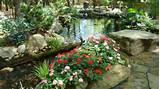 Landscaping Ideas & Garden Ideas > Water Gardens