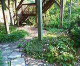 idea for shade garden under the deck shade small gardens