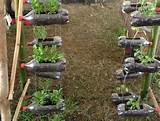 Vertical Gardening Ideas | Home Designs