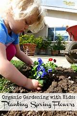 organic gardening with kids planting spring flowers