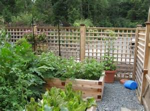 container gardening container vegetable gardening plans ideas