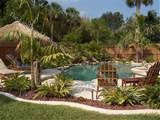 ideas outdoor living tropical pool tropical backyard pools