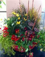Fall Container Garden | Great Garden Ideas | Pinterest