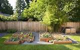 ... landscaping ideas on a budget pictures : Backyard Landscaping Ideas